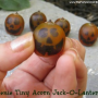 Teenie Tiny Acorn Jack-O-Lanterns